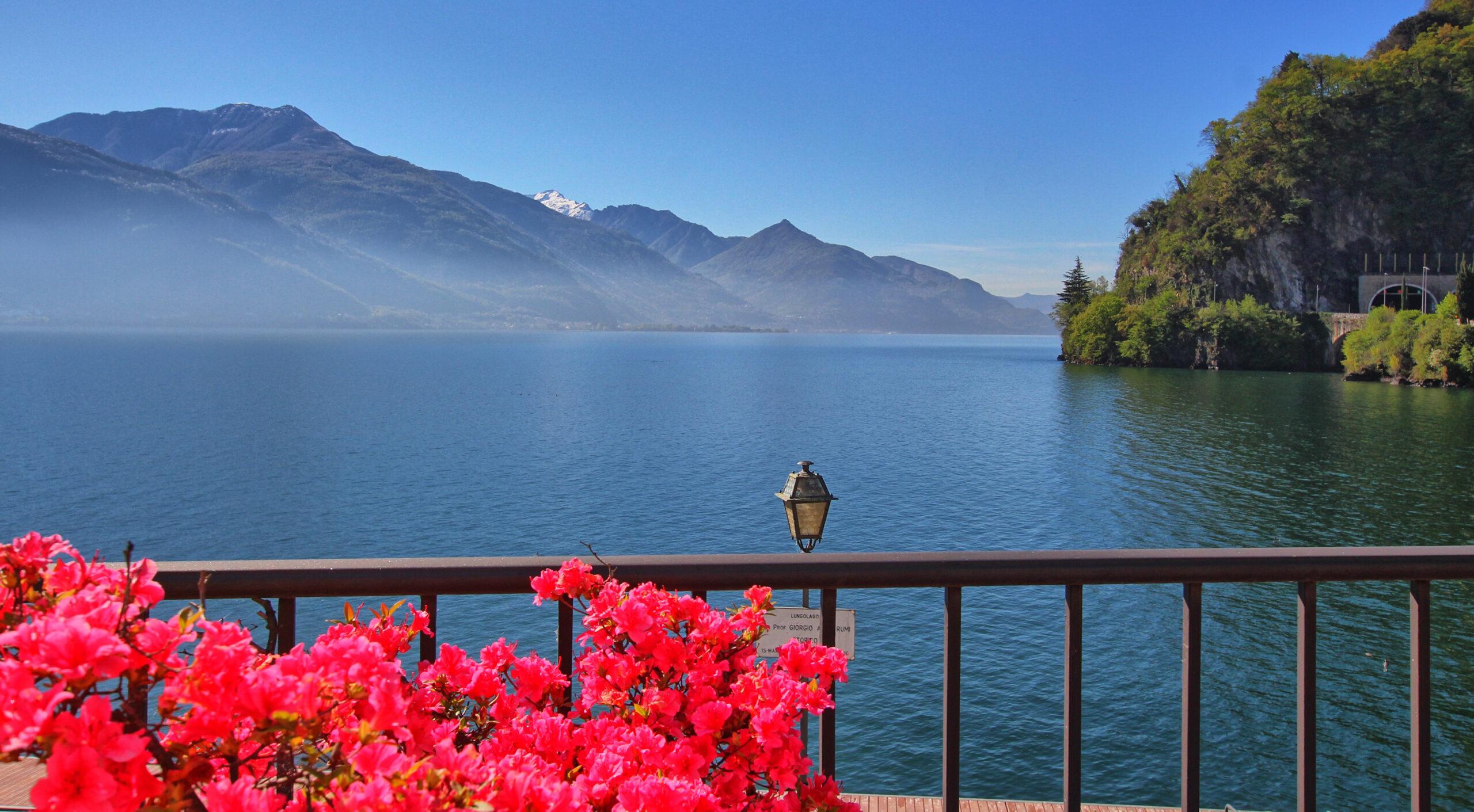 Panorami Romantici tra Lago e Natura